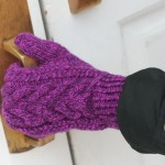 FO: Wood Hollow Mittens